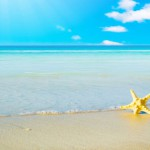 10-star-fish-sea-beach-sand-wallpaper_preview