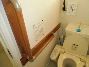 handrail_toiletjpg