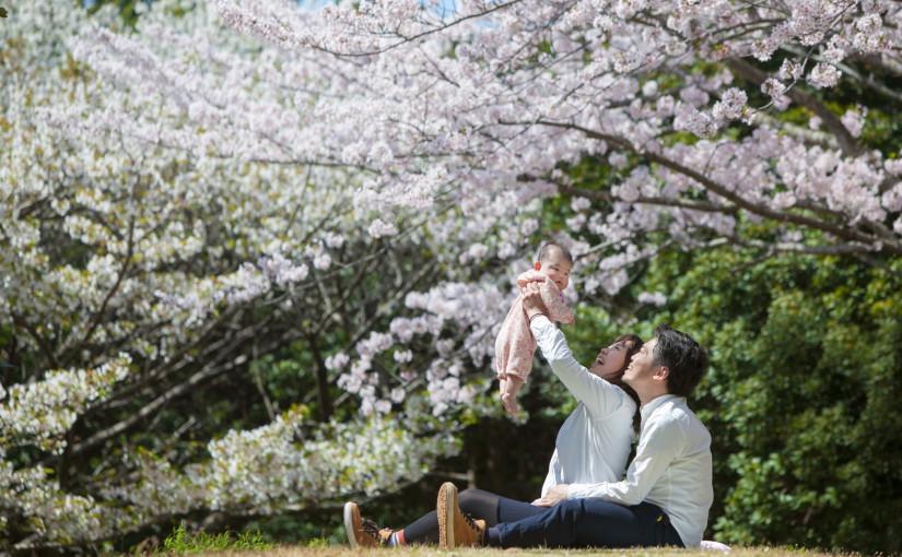2018年の桜フォト 3月1日8時より受付開始