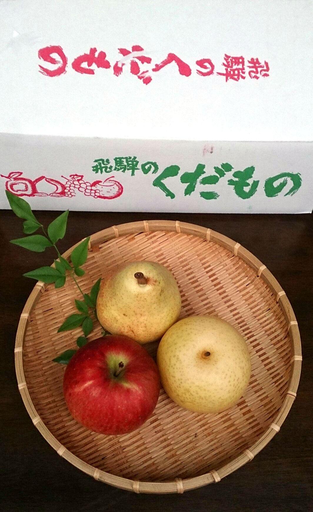 hidano-kudamono