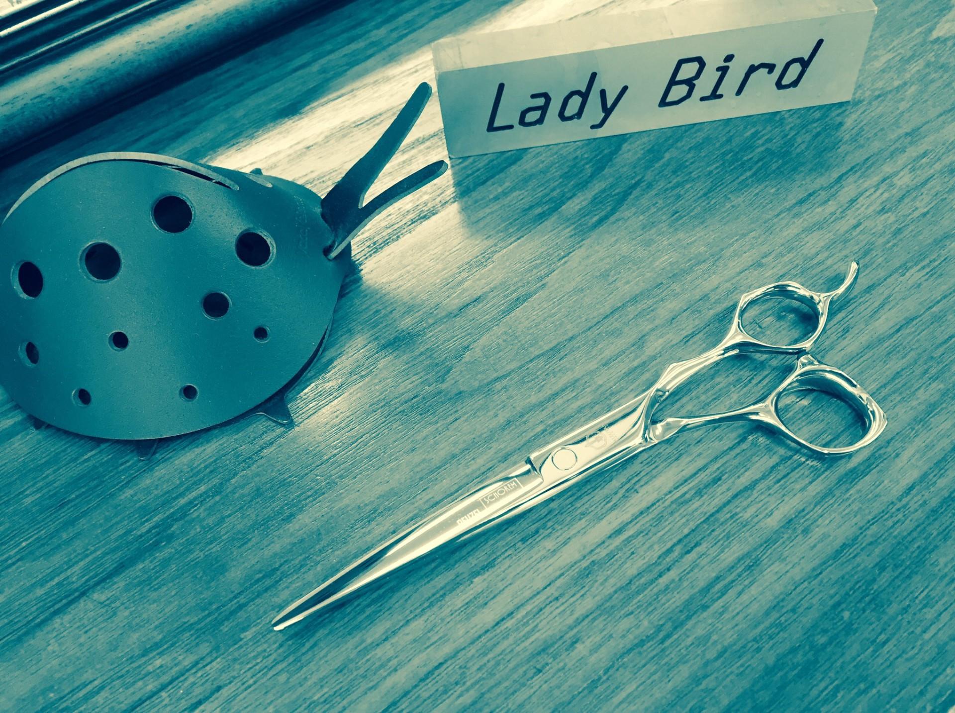 美容室 Lady Bird