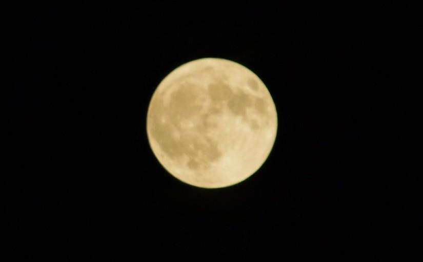 満月の夜ナメクジからのメッセージ